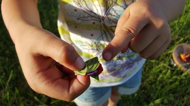 cuisine permaculture enfant 2