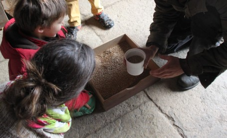 permaculture enfant paysan boulanger (2)