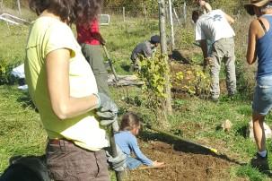 permaculture enfants jardin forêt
