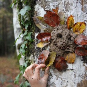 permaculture enfant ecole des bois