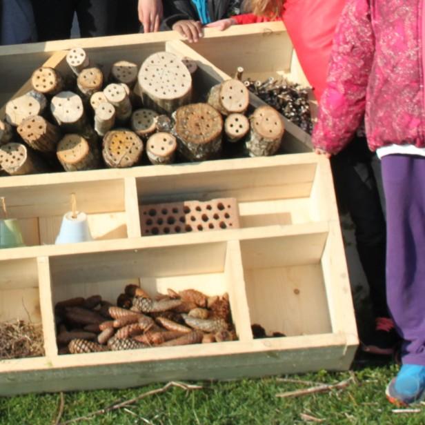 permaculture enfants ados hôtel à insectes