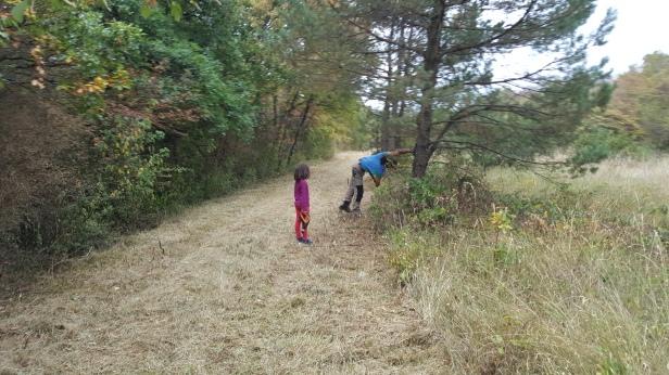 permaculture enfants ados outils dehors